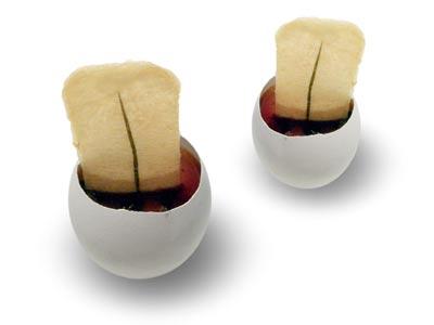 """""""ZVI"""" chicken egg with truffle sauce (2006)"""