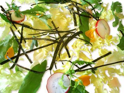Seaweed, aromatic herb and root salad (2004)