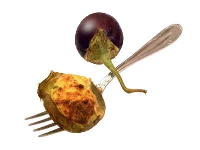 Stuffed eggplant (1991)