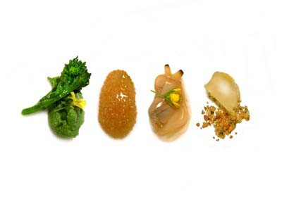 Turnip tops, amaranth, clams and lemon (2004)