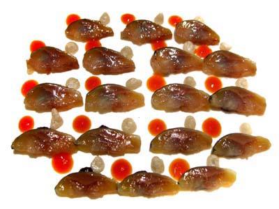 Sardinas crudas con pasta de aceituna negra, muselina de vainilla y perlas de pi