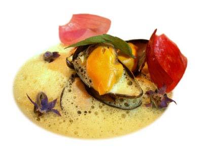 Mejillones con cebolla roja y emulsión de azafrán (2004)