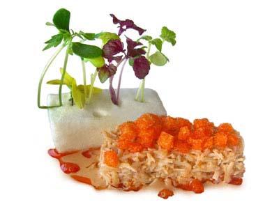 Txangurro frío con sabor a mar y brotes (2005)