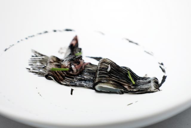 Chipirón curado en Sal Muria con hinojo marino