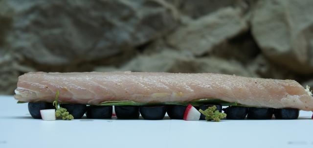 Lomo de chicharro negro, verdolaga, arándanos, rabanito y nuez moscada