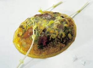 Cremosa Tibieza de hígados de pichón de Bresse a las brasas con legumbres, semil