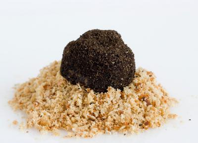 Trufa de Perdiz y Foie Gras al Chocolate