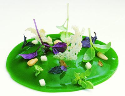 Cremoso de Parmesano con Velo de 6 Albahacas Silvestres y de Cultivo, con Piñon