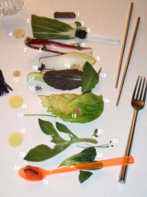Check Salad
