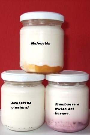 Yogur de Oveja Puebla  Luis