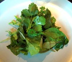 Ensalada de espinacas y otras hierbas silvestres