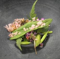 Hierbas y su clorofila con helado de trigo