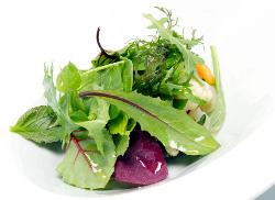 Menestra de verduras asadas y crudas, hierbas y brotes