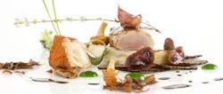 Conejo de monte con hinojo, foiegras y trufa
