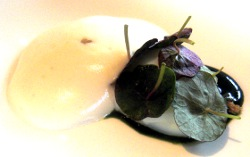 Egg with Wild Watercress, Nettles and Celery Turnip Foam