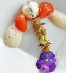 Queso adigeyskiy con sal negra y gelatina de tomate