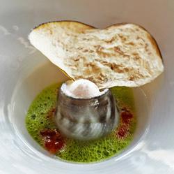 Pez de hielo con papel de berenjena, rabano picante y mousse de vegetales