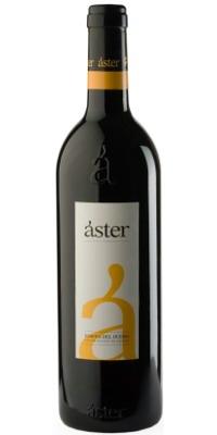 Áster Reserva 04